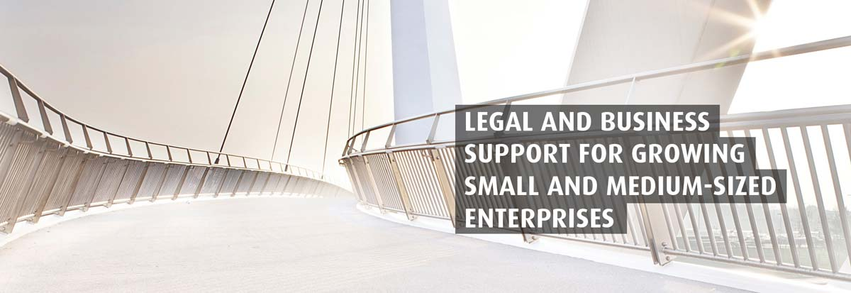 LEGAL AND BUSINESS SUPPORT FOR GROWING SMALL AND MEDIUM-SIZED ENTERPRISES AND PROFESSIONALS